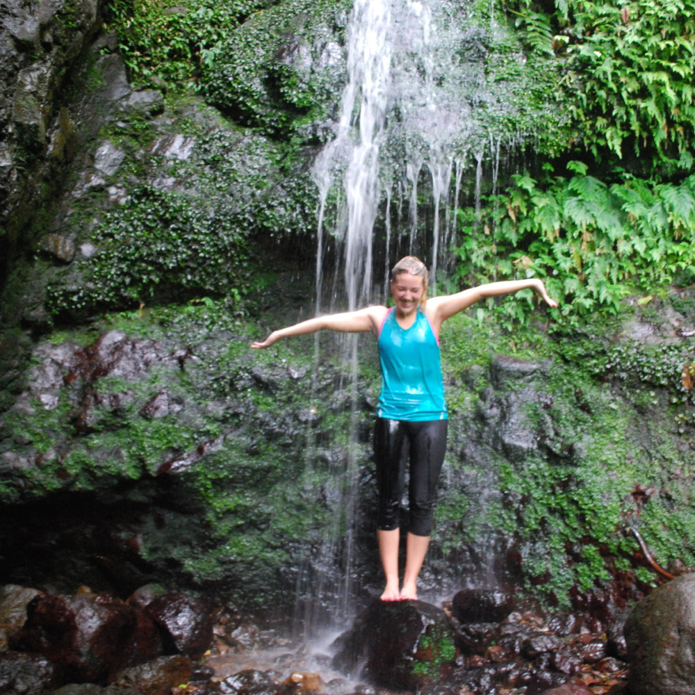 Hiking Through the Nevisian Rainforest in St Nevis, West Indies