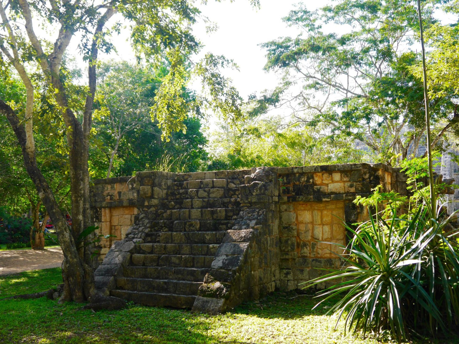 chichen-itza-mexico-jungle