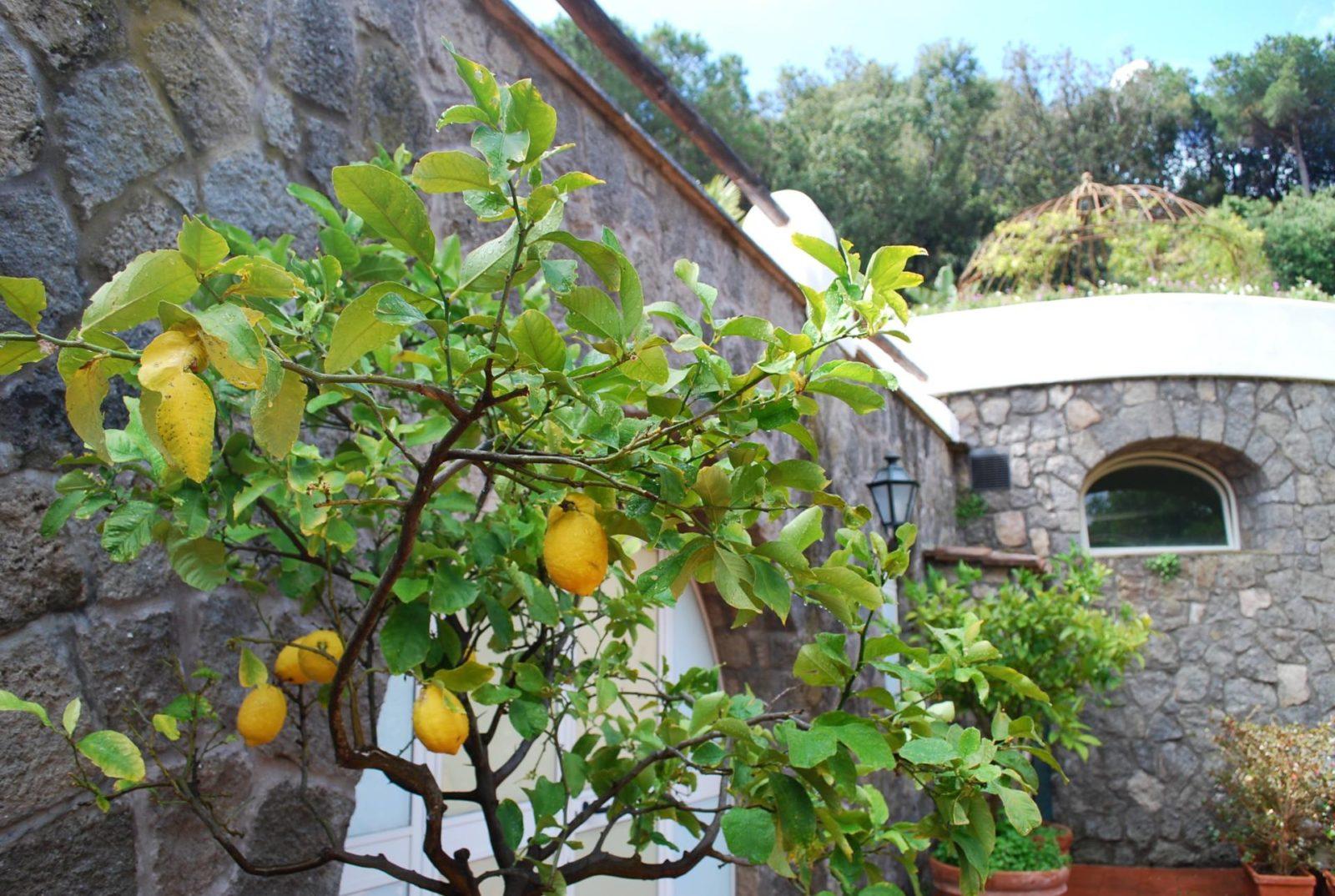 garden-villas-resport-ischia10