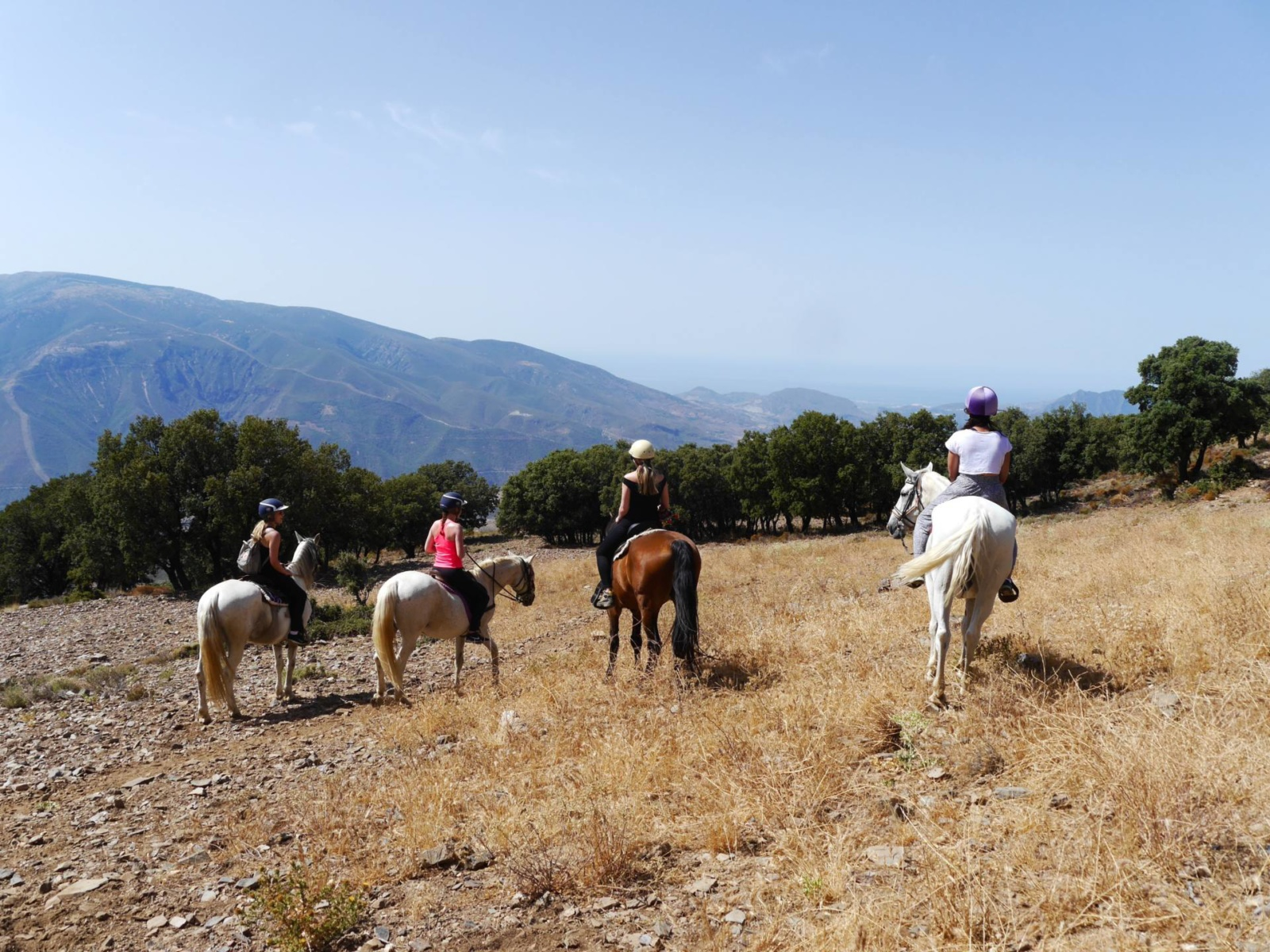 horse-riding-spain-alpujarras