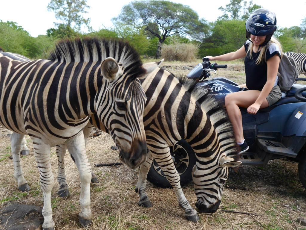 casela-mauritius-quad-safari