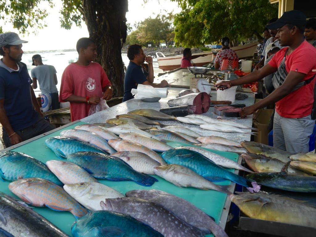 grand-baie-fish-market-mauritius