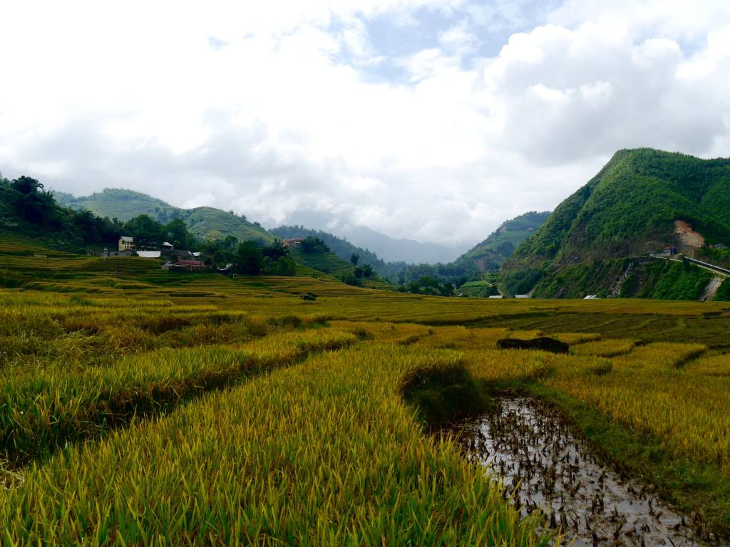 sapa-valley-vietnam