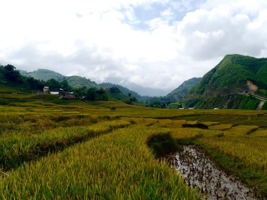 sapa-valley-vietnam