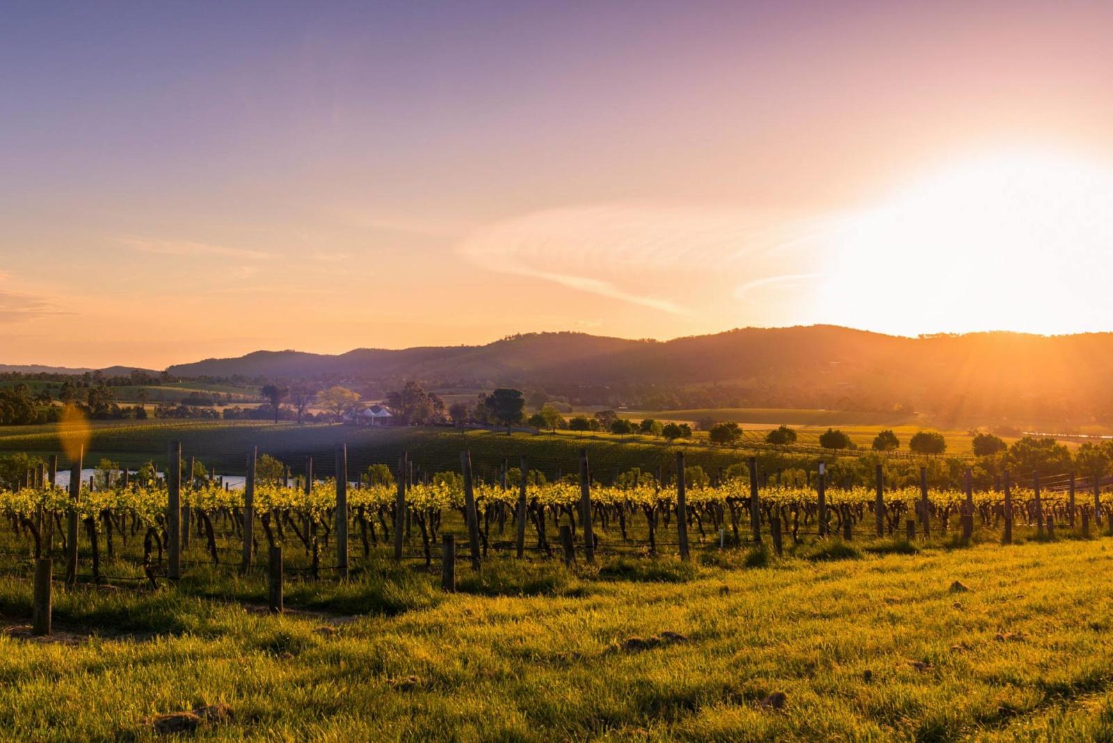 yarra-valley-melbourne