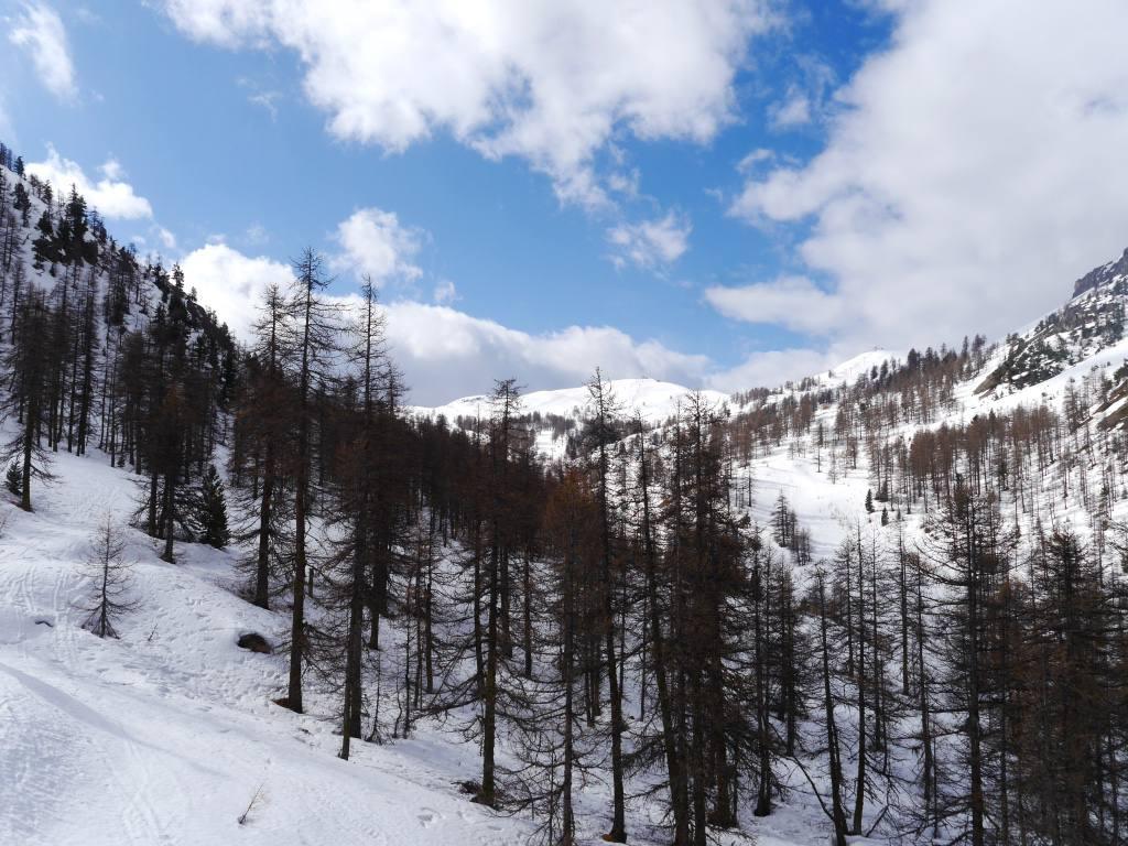 montgenevre-france-skiing-piste