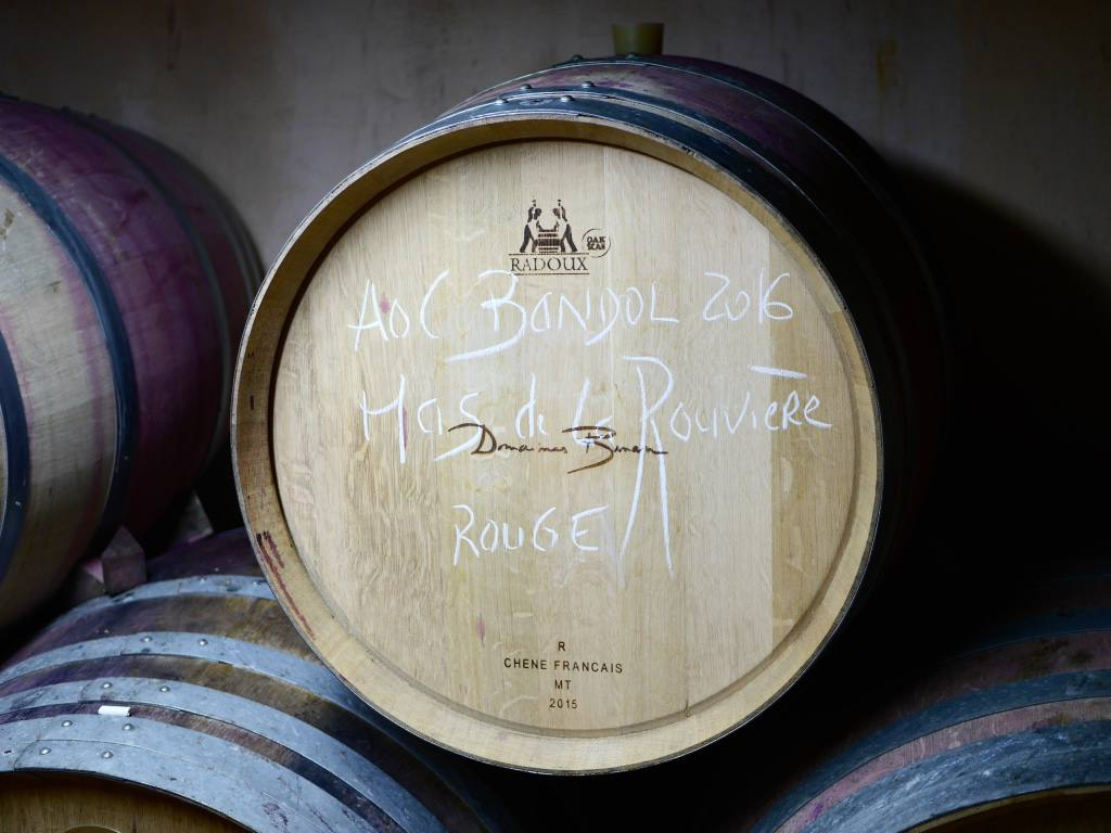 domaines-bunan-bandol-vineyard