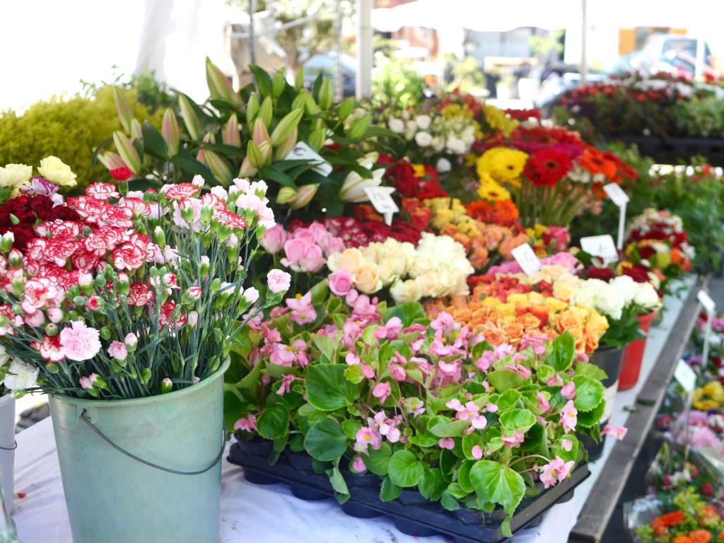 flower-market-graz