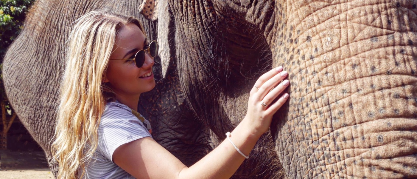 The Ethical Way to Encounter Elephants in Chiang Mai