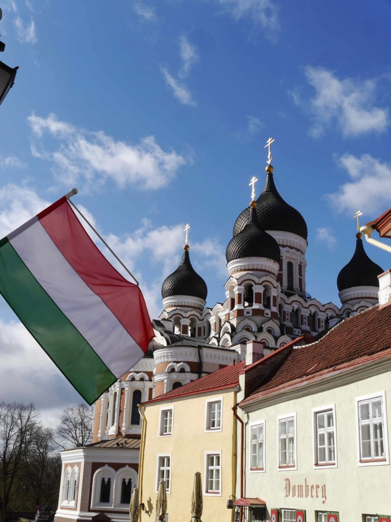 Scandinavian Cruise Tallinn