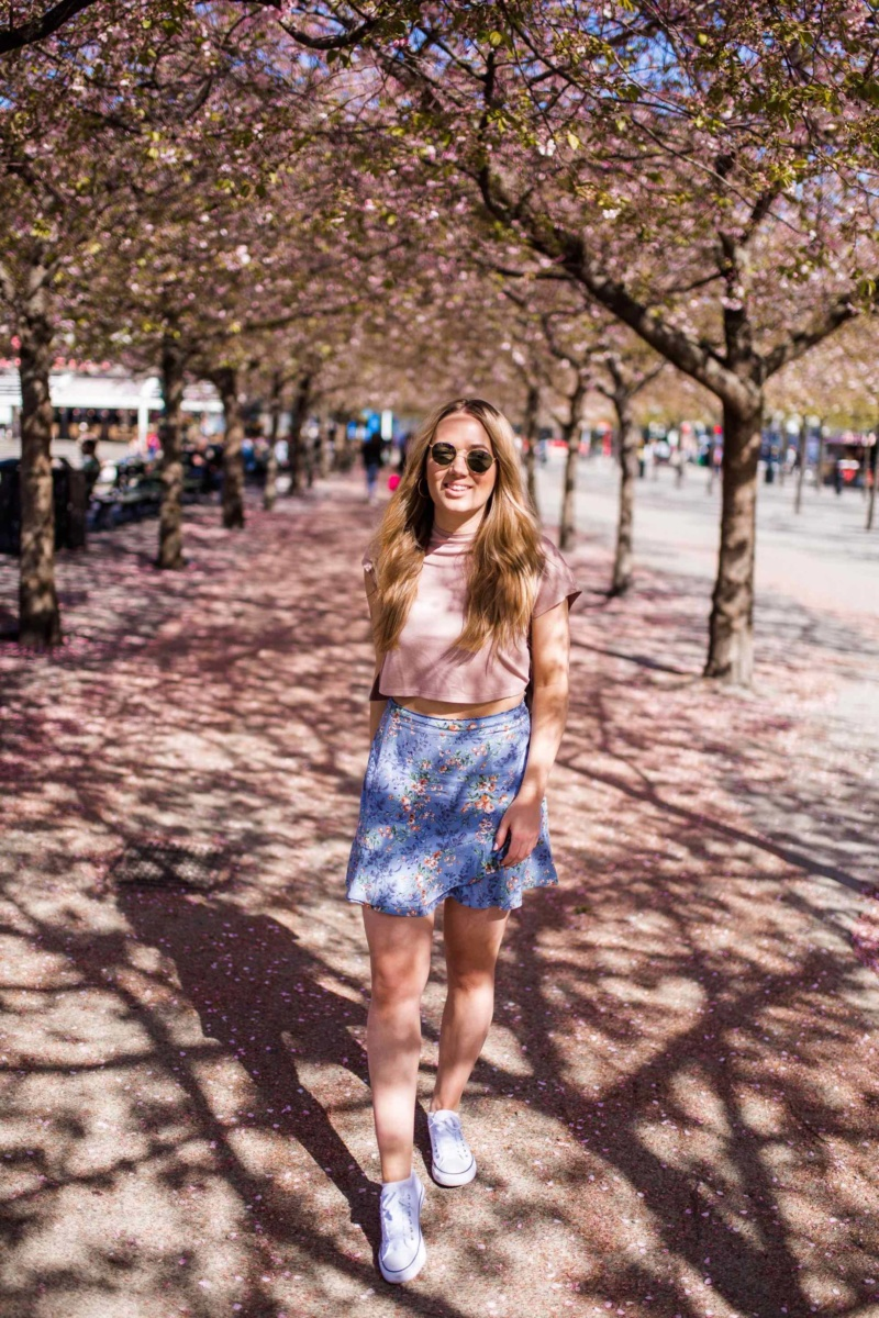 Cherry Trees Kungsträdgården Stockholm - The Travelista