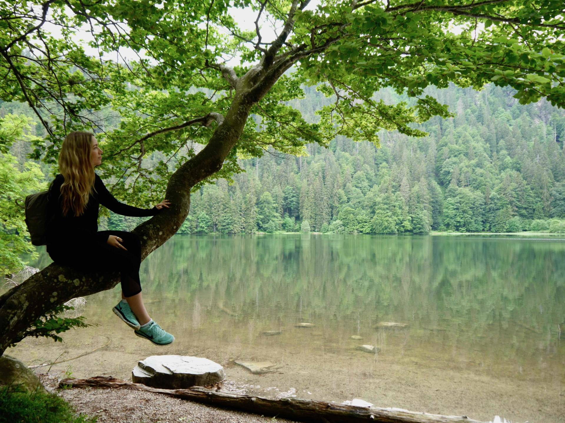 Feldsee Lake | Things to do in the Black Forest