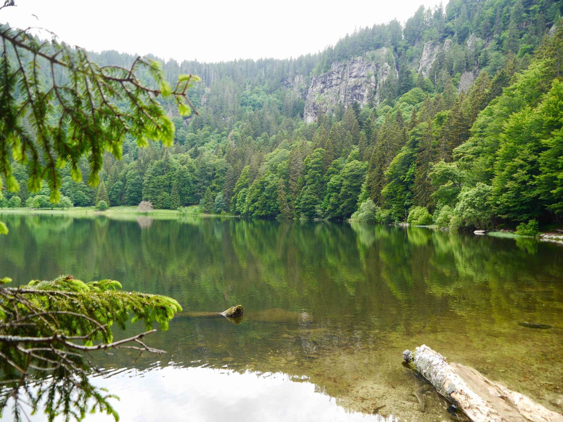 Feldsee Lake | Black Forest Itinerary