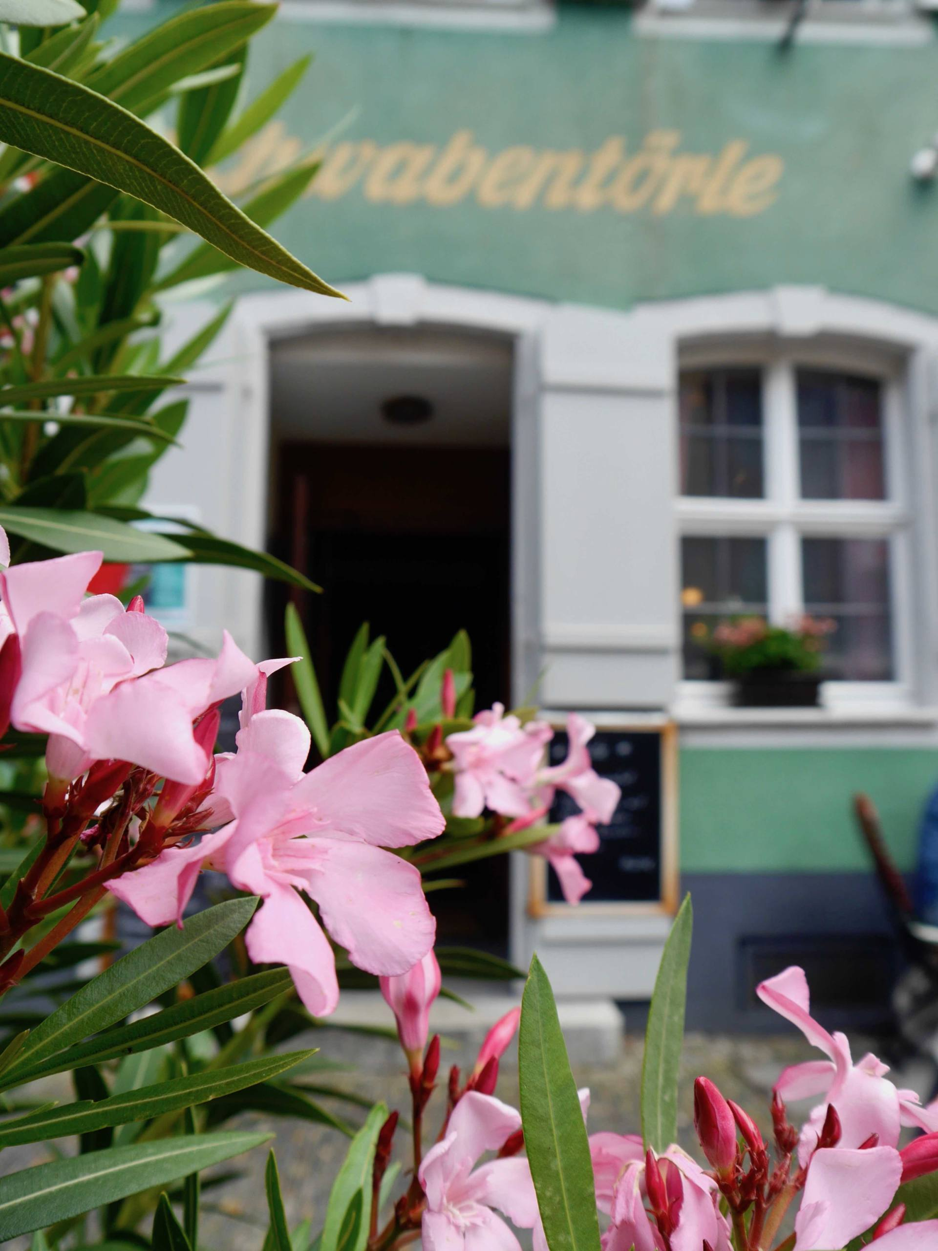 Flowers | Most Instagrammable Places in Freiburg