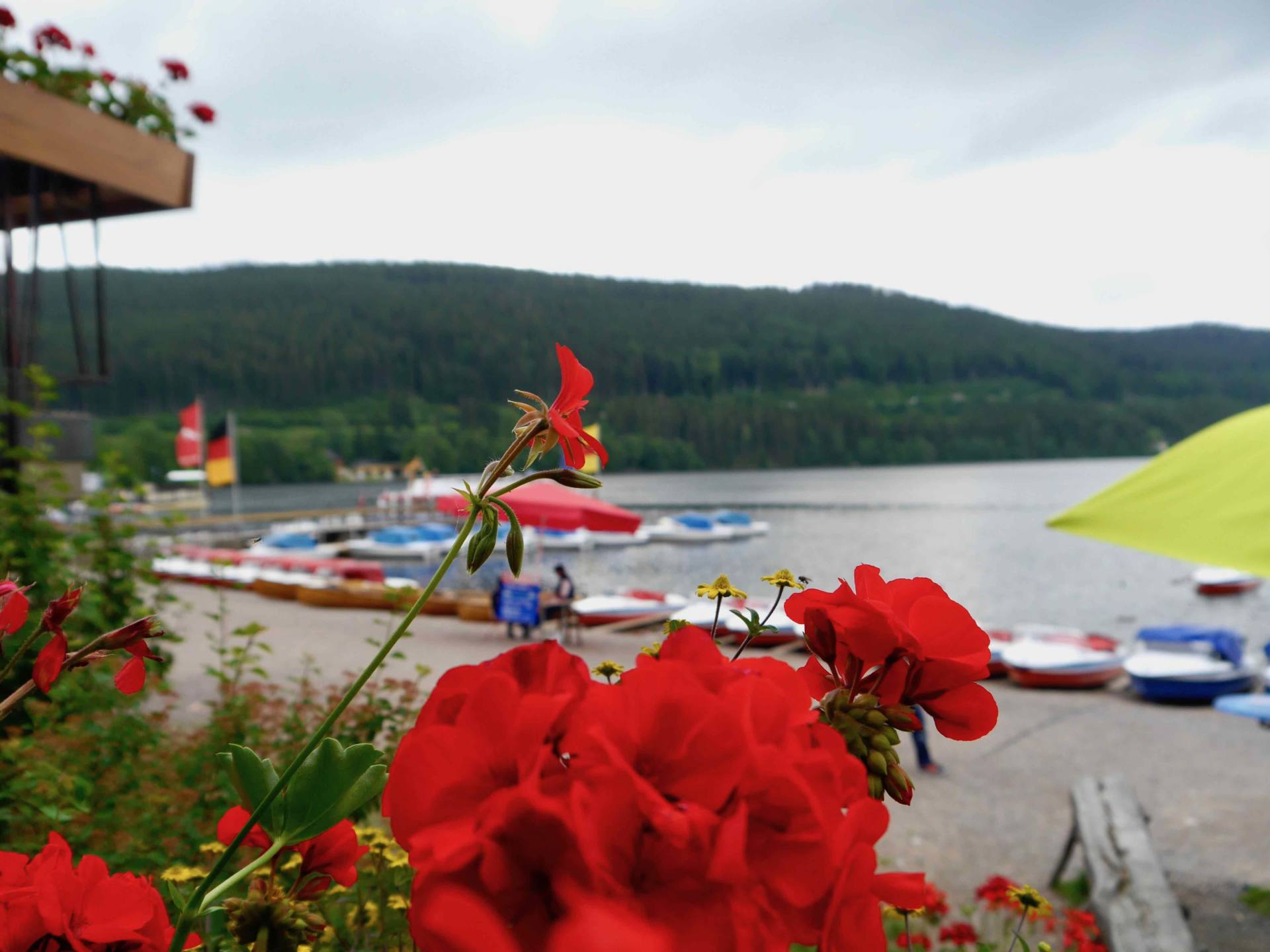 Lake Titisee, Germany | Black Forest Itinerary