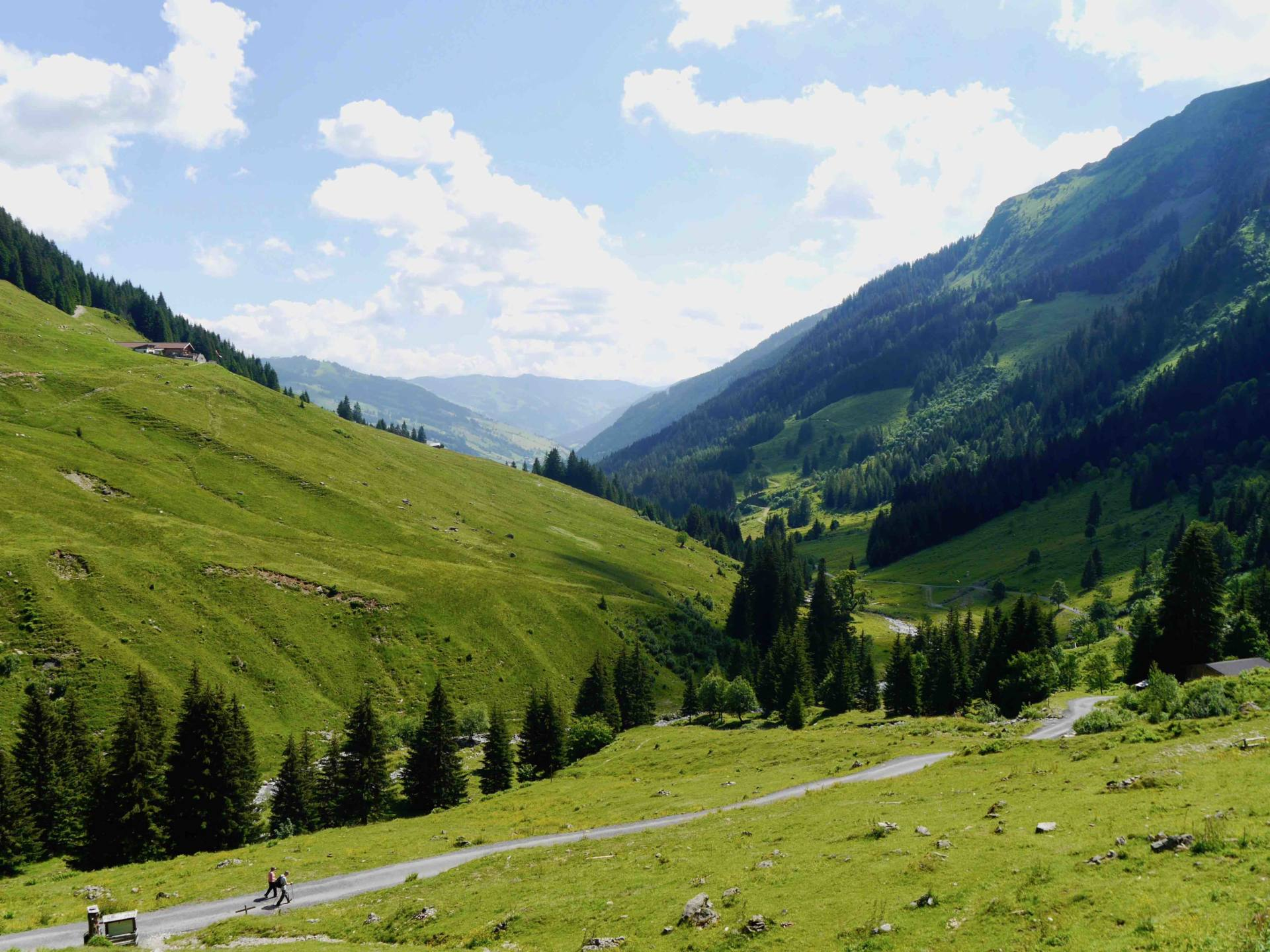 Austrian Alps in Summer | Saalbach Hinterglem