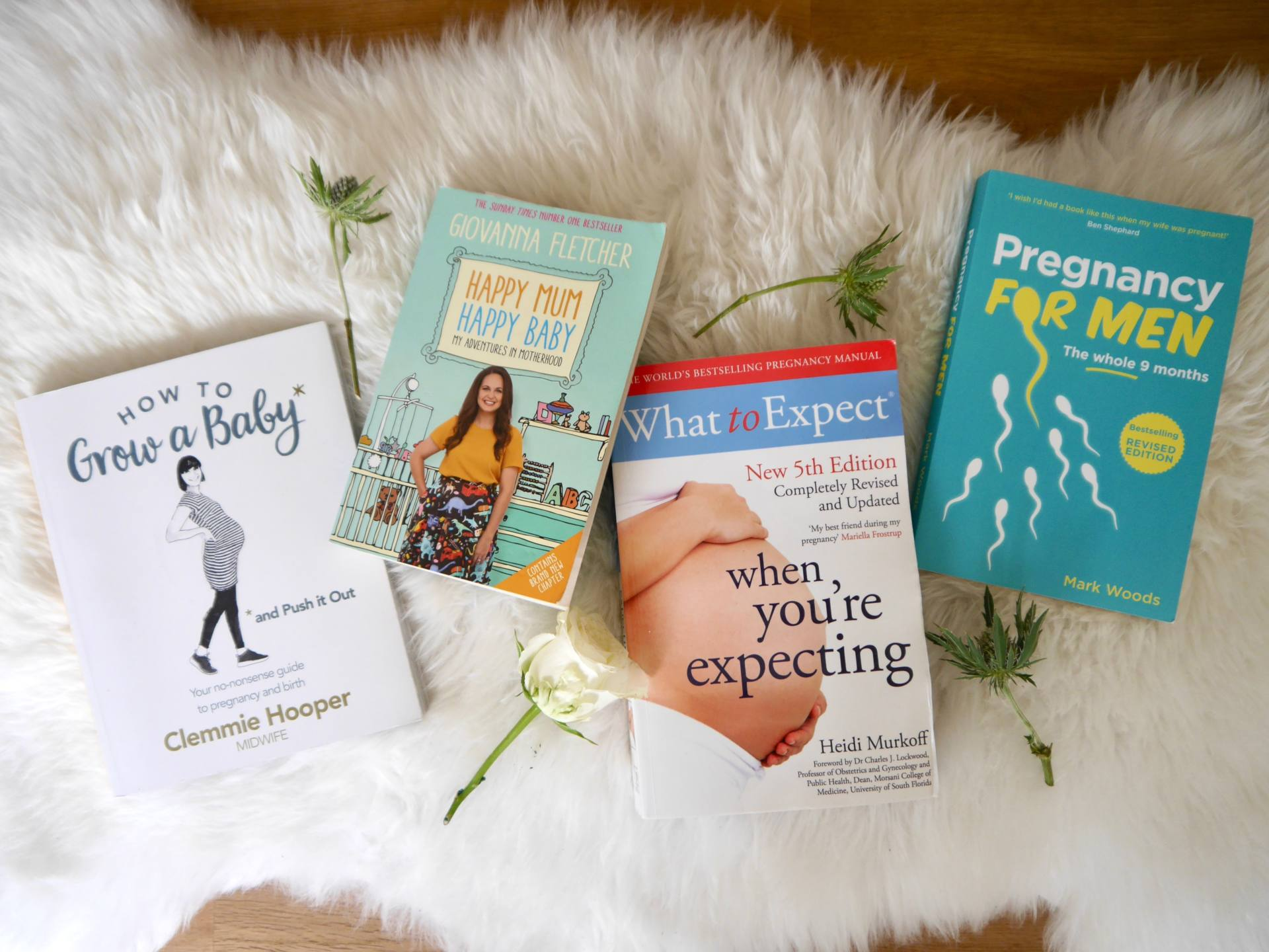 Pregnancy Update | Best Pregnancy Books Maternity Reading
