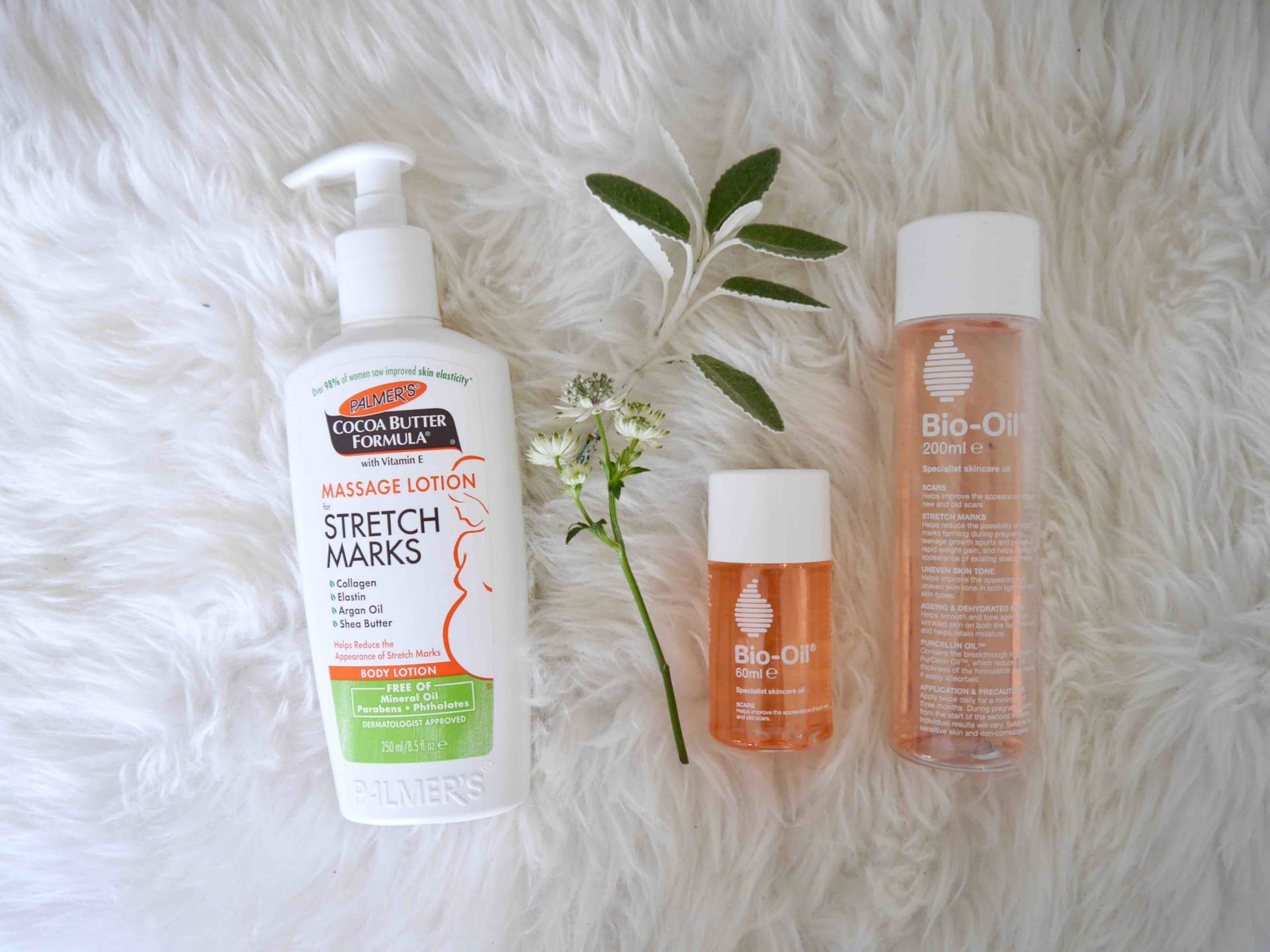 Pregnancy Update | Best Pregnancy Stretch Mark Creams