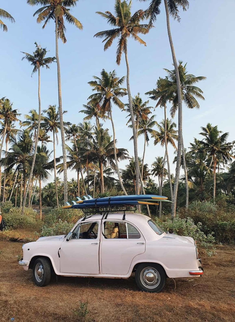 Pink Car Palm Trees Kerala
